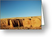 Clear Photo Greeting Cards - Hay Bales Greeting Card by Matteo Colombo