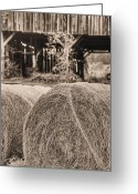 Black And White Barn Greeting Cards - Hay BW Greeting Card by JC Findley