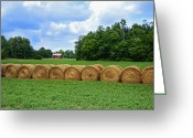 Digital-photography Photo Greeting Cards - Hay Day Greeting Card by Steven  Michael