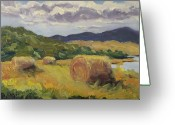 Colorado Greeting Cards Greeting Cards - Hay Hay Hay Greeting Card by Zanobia Shalks