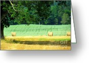 Green Print Glass Art Greeting Cards - Hay Landscape Greeting Card by France Laliberte