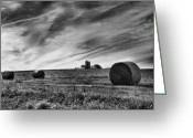 Country Framed Print Greeting Cards - Hayrolls and Field Greeting Card by Steven Ainsworth