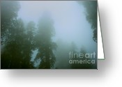 Biggest Tree Greeting Cards - Hazy Silhouette - green Greeting Card by Hideaki Sakurai