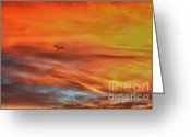 Grey Clouds Digital Art Greeting Cards - hd 413- Sunset Series Lone Seagull Greeting Card by Chris Berry