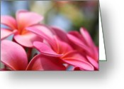 Flowers Of Nature Greeting Cards - He Pua Lahaole Ulu Wehi Aloha Greeting Card by Sharon Mau
