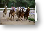 Jockeys Greeting Cards - Heading for Home Greeting Card by Linda Tenukas