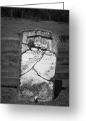 Cedar Fence Greeting Cards - Headstone of Lafayette Meeks Greeting Card by Teresa Mucha