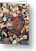 Close Up Greeting Cards - Heart stone among river stones Greeting Card by Garry Gay