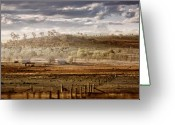 Farms Greeting Cards - Heartland Greeting Card by Holly Kempe