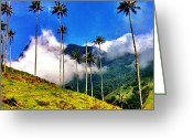 "Featured Greeting Cards - ""heaven"" ~ Salento, Colombia (c) 2012 Greeting Card by Skip Hunt"