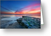 Beach Grass Greeting Cards - Heaven and Earth Greeting Card by Larry Marshall