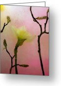 Pink Flower Branch Greeting Cards - Heavenly Light Greeting Card by Carmen Moise