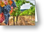 Cabernet Sauvignon Greeting Cards - Heavens Fruit Greeting Card by Mars Lasar