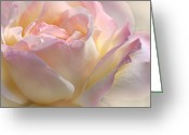 Pink Pastel Greeting Cards - Heavens Pink Rose Flower Greeting Card by Jennie Marie Schell