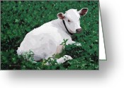 Green Pasture Greeting Cards - Hector at the Abbey Greeting Card by Donald Amorosa