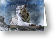 Stripes Greeting Cards - Hector Greeting Card by Julie L Hoddinott