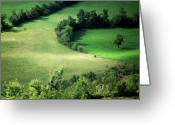 Hedge Greeting Cards - Hedged Farmland Greeting Card by Photo Marylise Doctrinal