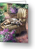 Funny Pet Picture Greeting Cards - Hello from a Kitty Greeting Card by Gina Femrite