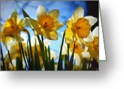 "\\\\\\\""boone County Photo Greeting Cards - Hello Spring Greeting Card by Cricket Hackmann"