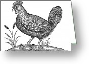 Hen Greeting Cards - Hen, Historical Artwork Greeting Card by Middle Temple Library