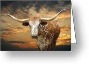 Old West Greeting Cards - Henly Longhorn Greeting Card by Robert Anschutz