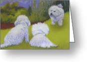 Bichon Greeting Cards - Her Royal Court Greeting Card by Tracy L Teeter