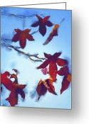 Autumnal Digital Art Greeting Cards - Here Today Greeting Card by Holly Ethan