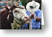 Chin Greeting Cards - Hereford Bull with Akubra Hat in Hyde Park Greeting Card by Kaye Menner