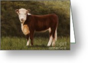 Cows Framed Prints Greeting Cards - Hereford Heifer Greeting Card by Michelle Wrighton