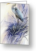 Wildlife Greeting Cards Prints Painting Greeting Cards - Herons Grace Greeting Card by James Williamson