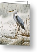 Wildlife Greeting Cards Prints Painting Greeting Cards - Herons Misty Shore Greeting Card by James Williamson