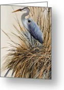 Wildlife Greeting Cards Prints Painting Greeting Cards - Herons Solitude Greeting Card by James Williamson