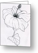 Hibiscus Tropical Drawings Greeting Cards - Hibiscus Greeting Card by Linda S Watson