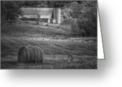 Shed Digital Art Greeting Cards - Hidden Away in Black and White Greeting Card by Mary Timman