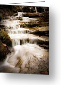 Tamyra Ayles Greeting Cards - Hidden Falls Greeting Card by Tamyra Ayles
