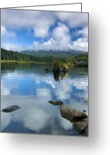 Trillium Lake Greeting Cards - Hidden in Fleece Greeting Card by Mike  Dawson