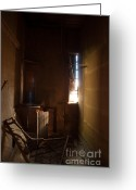 Daysray Photography Greeting Cards - Hidden in Shadow Greeting Card by Fran Riley