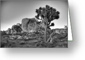 Desert Greeting Cards - Hidden Valley Rock Greeting Card by Peter Tellone