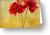 Dahlia Greeting Cards - Hiding Greeting Card by Rebecca Cozart