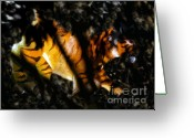 Prowling Greeting Cards - Hiding tiger Greeting Card by David Lee Thompson