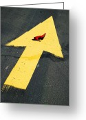 Direction Greeting Cards - High heel and arrow Greeting Card by Garry Gay