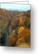 River Scenes Greeting Cards - Highbridge highs Greeting Card by Trish Hale