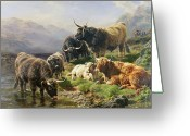 Livestock Painting Greeting Cards - Highland Cattle Greeting Card by William Watson