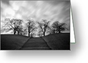 Bare Tree Greeting Cards - Hill, Stairs And Trees Greeting Card by Peter Levi