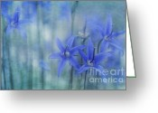 Lines Greeting Cards - Hillside Blues Greeting Card by Priska Wettstein