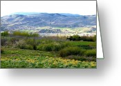 Outskirts Greeting Cards - Hillside Corral Greeting Card by Will Borden