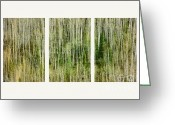 Side View Greeting Cards - Hillside Forest Greeting Card by Priska Wettstein