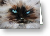 Kitten Pastels Greeting Cards - Himalayan Greeting Card by Mary Sparrow Smith