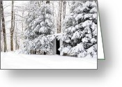 Appalachian Mountains Greeting Cards - His and Her Outhouses Greeting Card by Thomas R Fletcher