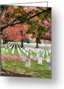 Veterans Day Greeting Cards - His Wife Greeting Card by JC Findley